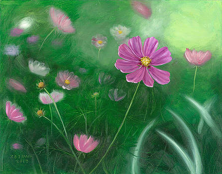 Cosmos Flowers by Helian Osher