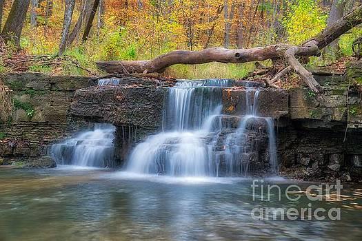 Dreamy Falls by Bill Frische