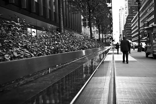 Dreamy Manhattan  by Zarija Pavikevik
