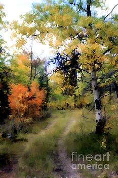 Roland Stanke - Dreamy Road