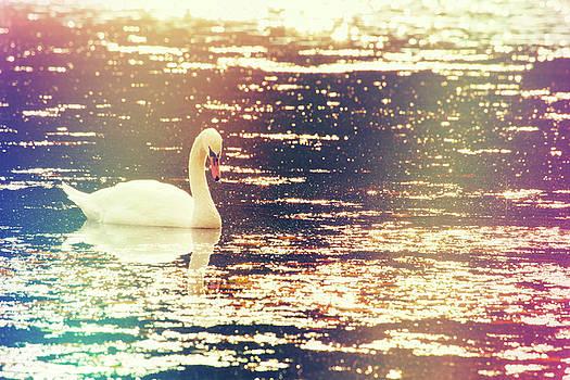 Karol Livote - Dreamy Swan