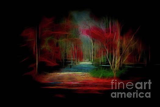 Dreamy walk by Geraldine DeBoer