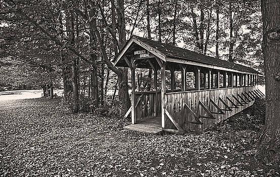 Dreeser Creek Bridge by Jim Markiewicz