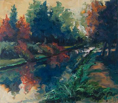 Drente canal by Rick Nederlof