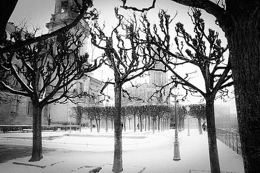 Dresden - Bruehls Terrace by Dorit Fuhg