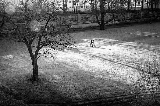 Dresden - Elbwiesen Johannstadt by Dorit Fuhg