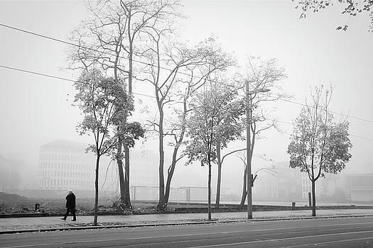 Dresden - foggy Ostra-Allee by Dorit Fuhg