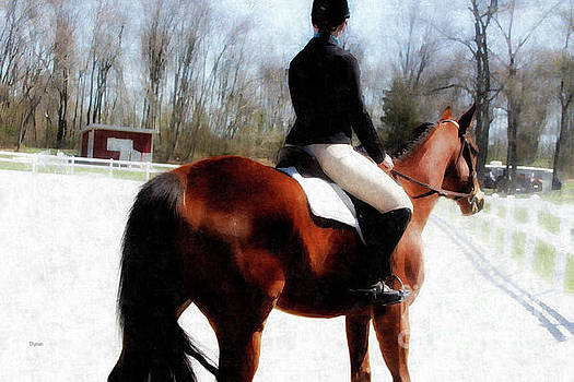 Dressage in Waiting  by Steven Digman