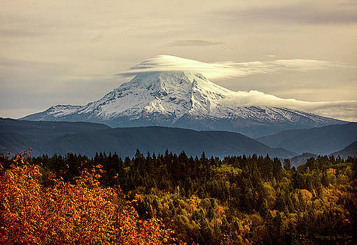 Dressed For Fall by Rod Stroh
