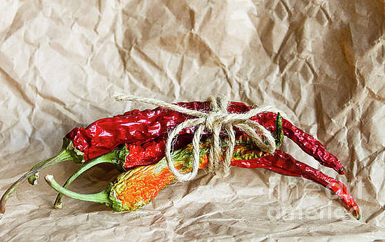 Dried chili pepper on the table by Natalia O