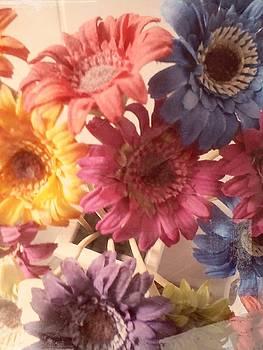 Dried flowers by Arjun L Sen