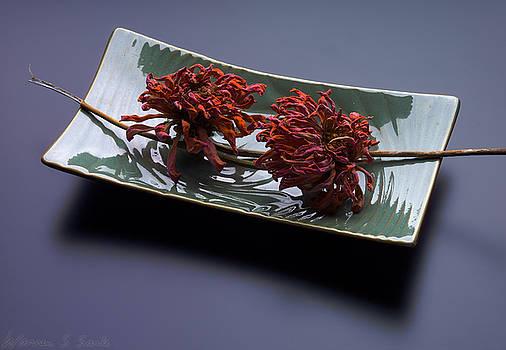 Warren Sarle - Dried Flowers on Rectangular Green Dish