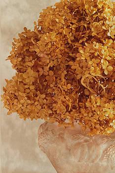Sandra Foster - Dried Hydrangea Flower Arrangement