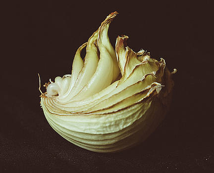Dried Onion by Hyuntae Kim