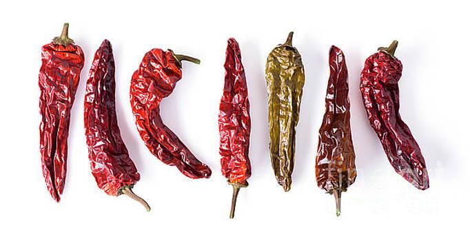 Dried Peppers Lined Up by Jason Kolenda