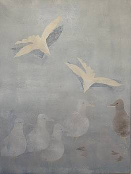 Drifting Birds and Seagulls by Kathrine Fisker