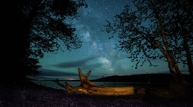 Driftwood and Milky Way by Jeff Clark