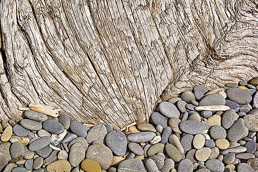 Driftwood and Rock Abstract by Peter J Sucy