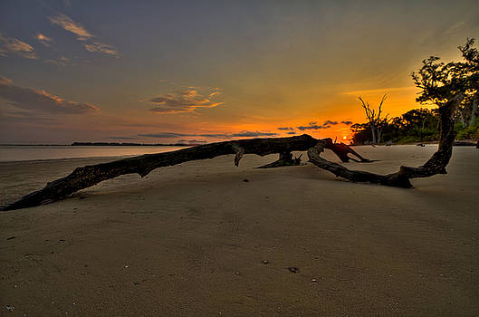 Jason Blalock - Driftwood Beach HDR 1
