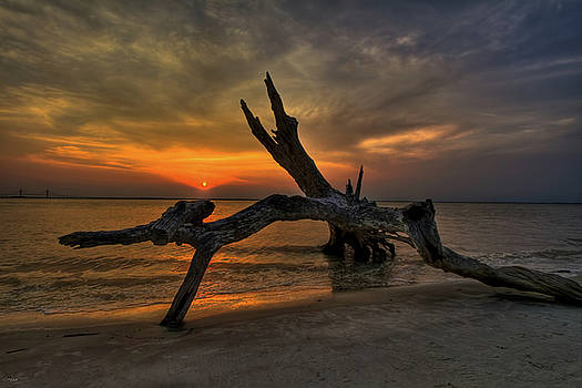 Jason Blalock - Driftwood Beach HDR 4