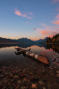 Driftwood dreams by Alan Anderson