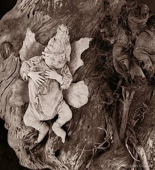 Anne Geddes - Driftwood Fairy