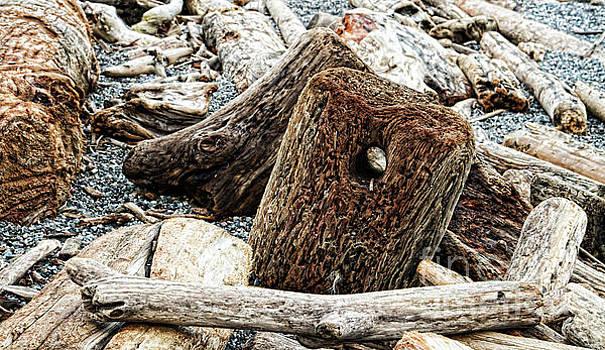 Driftwood Piled Up on Beach by Colin Cuthbert