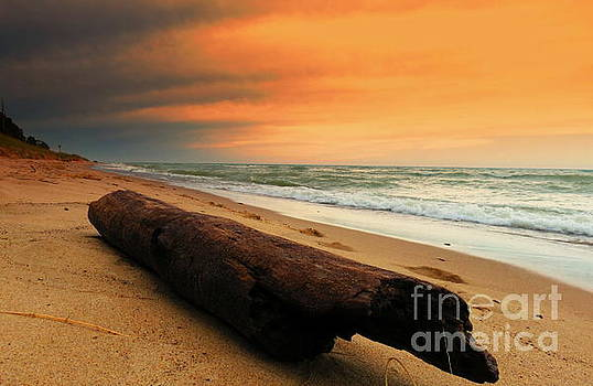 Driftwood Sunset Lake Michigan Waves And Dreams by Jack Martin
