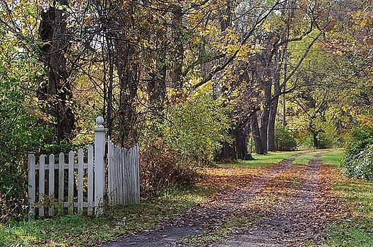 Driveway Entrance  by Stephanie Calhoun