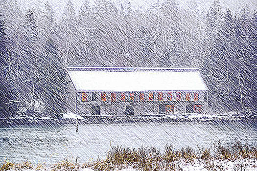 Driving Snow At the Old Smokehouse by Marty Saccone