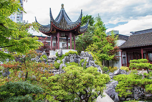 Dr. Sun Yat Sen Classical Chinese Garden, Vancouver by Venetia Featherstone-Witty