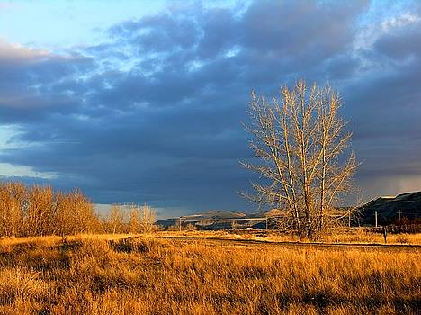 Drumheller Valley by Jim Justinick