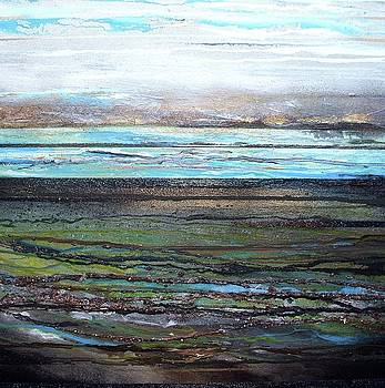 Druridge bay low tide Coaldust seaweed and driftwood No1 by Mike   Bell