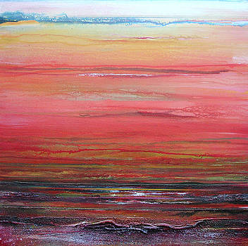 Druridge bay sunset and driftwood  series no2 by Mike   Bell