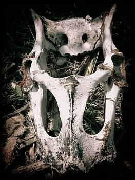 Leah Grunzke - Dry Bones