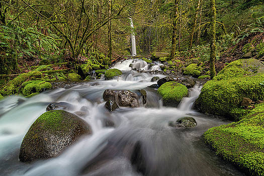 Dry Creek Falls in Springtime by David Gn