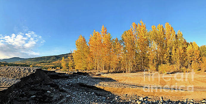 Dry Creekbed by Victor K