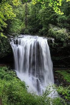 Dry Falls Is Not Dry II by Carol Montoya