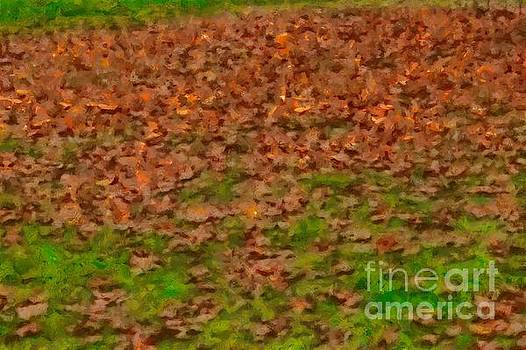 Dry leaves on grass by Ashish Agarwal