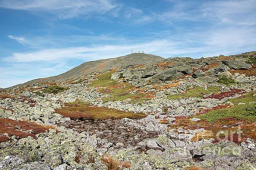 Dry River Trail - Mt Washington New Hampshire by Erin Paul Donovan