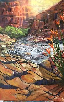 Dry Wash by Chuck Kemp