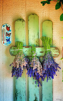Drying Bunches of Lavender by Dee Browning