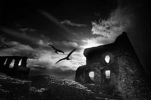 Dryslwyn Castle 3b by Phil Fitzsimmons