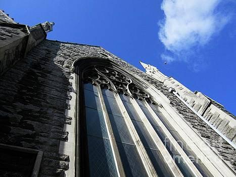 Dublin Architecture by Crystal Rosene