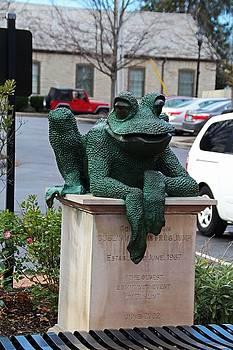 Dublin Frog III by Michiale Schneider