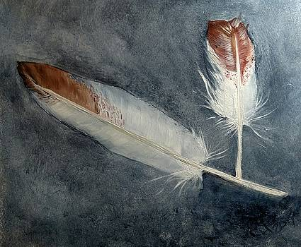 Duck feathers by Joan Mansson