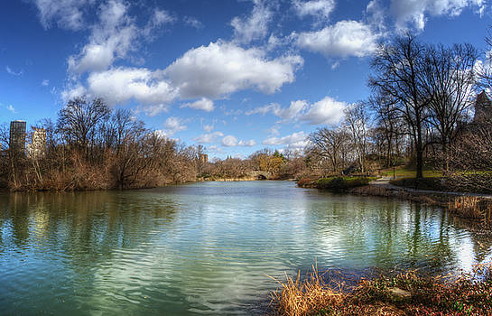 Duck Pond on a Beautiful Day by Vicki Jauron