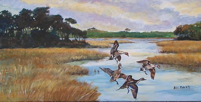 Ducks by Bill Roberts