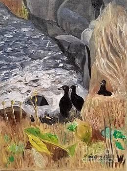 Ducks by Water by Madeleine Prochazka