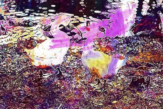 Ducks Water Birds Wildlife Animals  by PixBreak Art